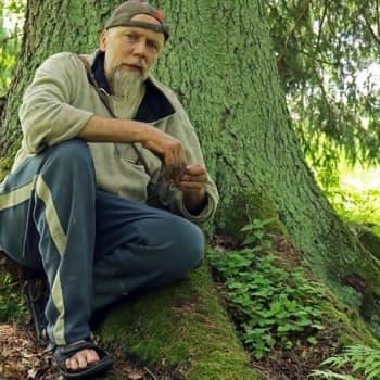 Metsäradio.: Hörtsänän unohdettu arboretum