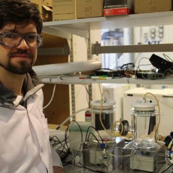Tiedeykkönen: Biopolttoaineita synteettisen biologian avulla