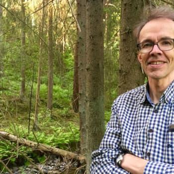 Sunnuntaivieras: Sunnuntaivieras Heikki Setälä rakastui Helvettiin