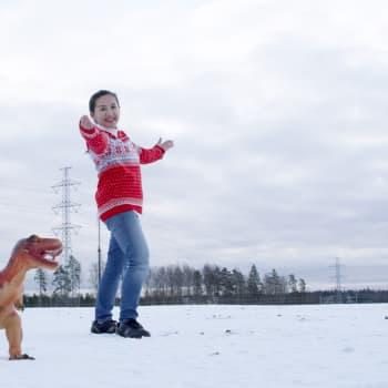 YLE Helsinki: Vantaan Jurase Park voi olla myös Jurapark tai Dinopark