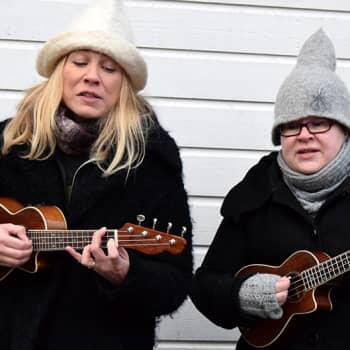 YLE Häme: Tuittulan Ukuleleorkesteri hurmaa Hauholla