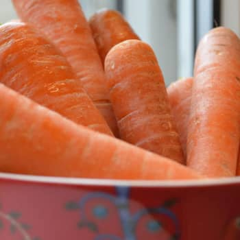 Ruokatreffit: Katusoittajan keittokirja: Pienelläkin budjetilla voi kokea olevansa varakas
