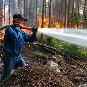 Metsäradio.: Metsää poltettiin Nuuksiossa
