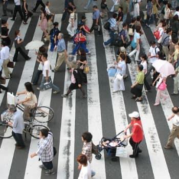 Puheen Iltapäivä: Japani on muutakin kuin geishoja ja kirsikkapuita