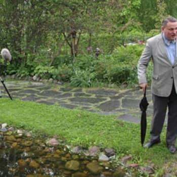 Yövieras: Laulava puutarhuri ahertaa tulevien sukupolvien hyväksi