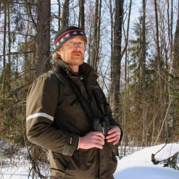 Metsäradio.: Valkoselkätikan metsä