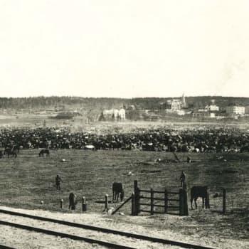 Annikki Kainlauri Lahden valtauksesta 1918