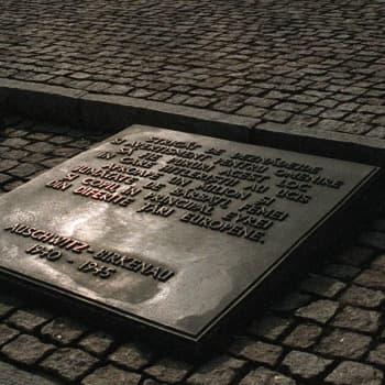 Kansanvainojen uhrien muistopäivä