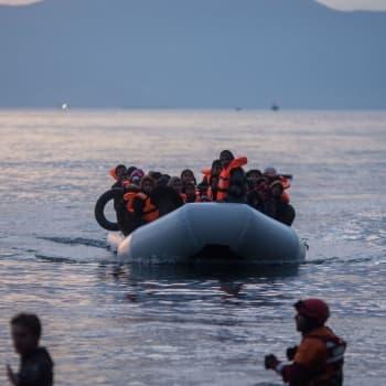 EU och flykting- och migrantsituationen vid den grekisk-turkiska gränsen