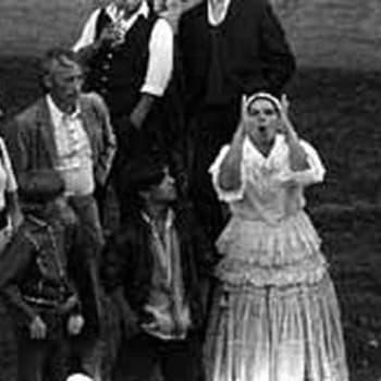 Ulkopuolella yhteiskunnan. Romanit (1965)