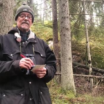 Talvilintulaskentoja 50 vuotta Halikonlahden maisemissa