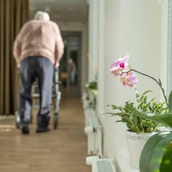 Inga konstaterade coronafall inom äldrevården i Östnyland