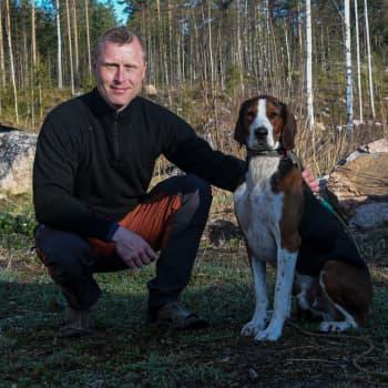 Jägarna har fått kontroll över vitsvanshjortstammen i Borgånejden - men varför matas djuren?