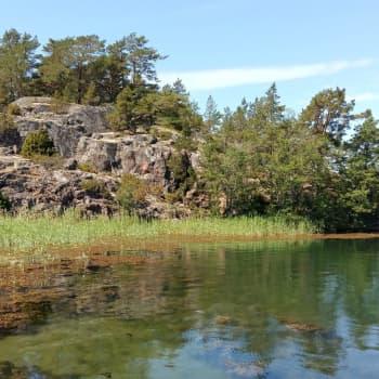 Sedimentexperimenten utanför Houtskär fortsätter