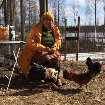 Maatiaismuori Kirsti Hassinen tuntee suomalaisen maaseudun ja maatiaiset
