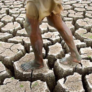 Hiekka ja metallit ehtyvät -Sitran tulevaisuusselvitys kiirehtii toimia luonnon hyväksi