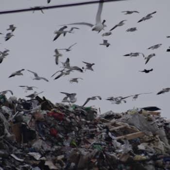 Kansalaisten jätetietoisuus on heräämässä Venäjällä