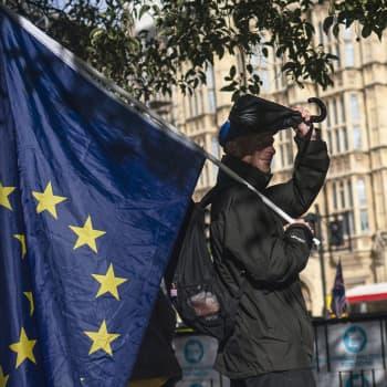"""Brexit-sopimus herättää huolta, mutta myös toivoa MEP:eissä — """"Boris Johnson teki isompia myönnytyksiä kuin EU"""""""