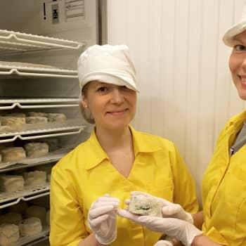 Arkisin päivätöitä, viikonloppuisin vegaanisia homejuustoja – Matilda Mela ja Kaisa-Leena Pesonen ovat alansa pioneereja