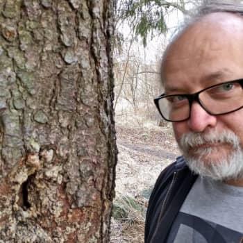 Metsäradio.: Metsä vapautui lumesta Uudellamaalla