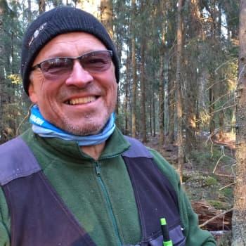 Metsäradio.: Metsä sulaa Koijärvellä