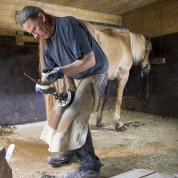 YLE Helsinki: Hevosen kengittäjistä on pula - ammatti sekä vaatii että tarjoaa paljon