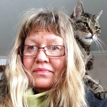 Om katter och krämpor
