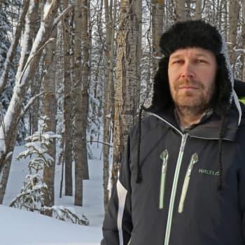Metsäradio.: Käävät kertovat metsän arvoista