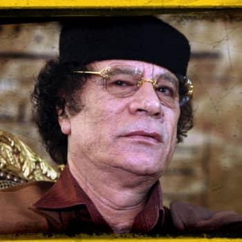 Hullu Koira Muammar Gaddafi