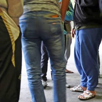 Ajantasa: Monimutkainen järjestelmä tekee turvapaikanhakijan työllistymisen lähes mahdottomaksi