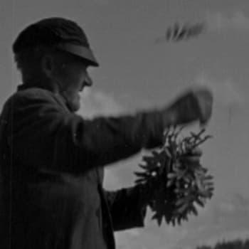 Kansanparantajat Aappo Jurvelin ja Juho Luomajoki eli Hätämaan tietäjä