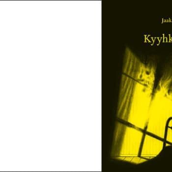 Kirjakammi: Jaakko Yli-Juonikas: Kyyhkysinetti