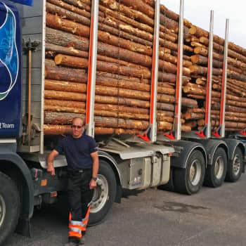 Metsäradio.: Puunkuljetuksen pikkujätti
