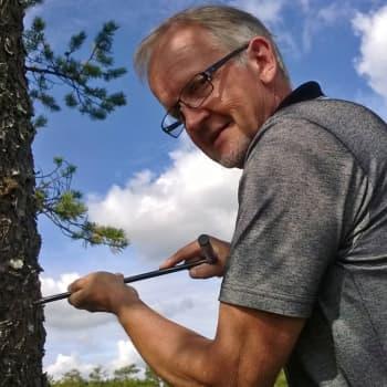 Metsäradio.: Muutaman metrin kokoiset ikihongat