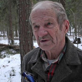 Metsäradio.: Vuosikymmenien mittaisella metsätaipaleella