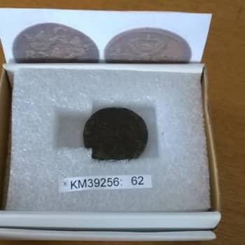 Tauko: Arkeologi pelastaa historian palasia