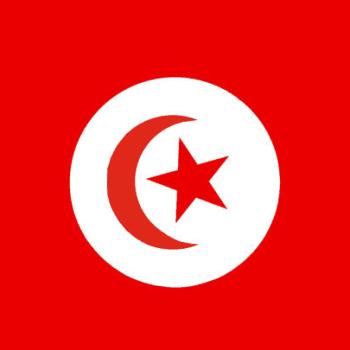 Osa 1: Tunisia ja mistä arabikevät oikein kumpusi?