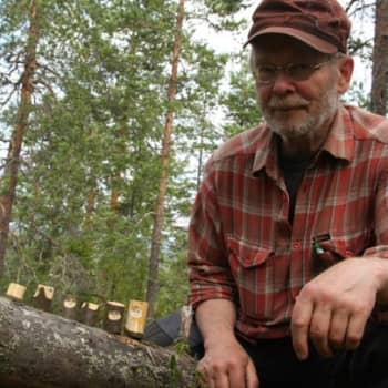 Metsäradio.: Mikko Kiion shakkinappulat