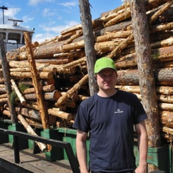 Metsäradio.: Puita kuljetetaan proomulla Saimaalla