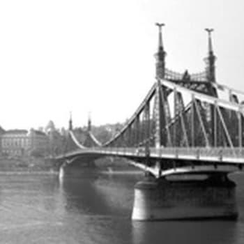 Unkarin vaaran vuodet suomalaisdiplomaattien silmin (1996)