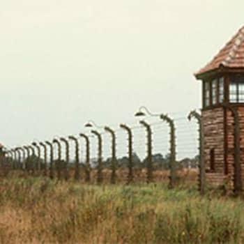 Holokaustin lapset