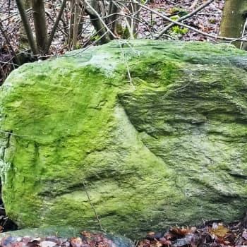 Vihreän kiven salaisuus