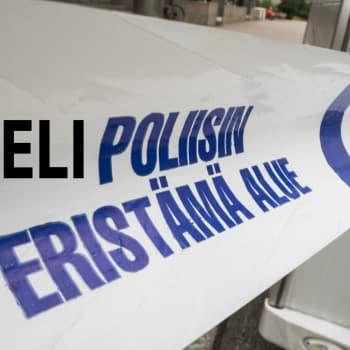 Suomen kielen lautakunta pitää yleiskielen elävänä