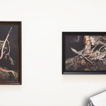 Esko Männikkö kuvaa uupuneita puita - Kaarina Kaikkoselle miesten vaatteet kuvaavat isän kaipuuta