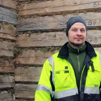 Vehvilä, Suonenjoki: Hirsirakentaja, ruokohelpi, mansikkatila