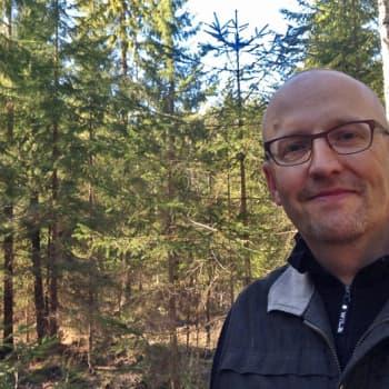 Luontoretki.: Jatkuvan kasvun metsä