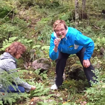 Hillan ja Minnan Akuutti: Terveyttä luonnosta