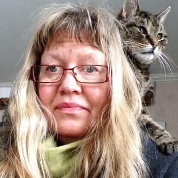 Dokumenterat: Om katter och krämpor