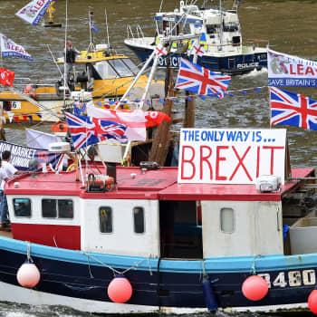Maailmanpolitiikan arkipäivää: Brexit hermostuttaa Eurooppaa