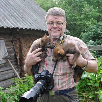 Sunnuntaivieras: Lassi Rautiaisen luontokuvat kiinnostavat ympäri maailmaa